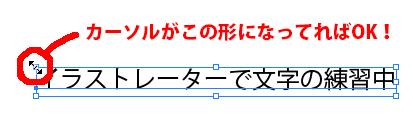 カーソル文字拡大